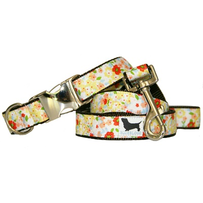 LARGE DOG COLLAR WITH LEAD in Sweet Tarts