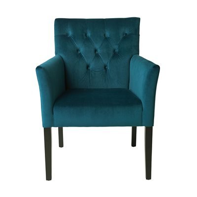 Cozy Living Sander Upholstered Velvet Armchair in Petrol