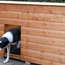 Shiplap-Wooden-Dog-Kennel-with-Cut-Out-Door.jpg