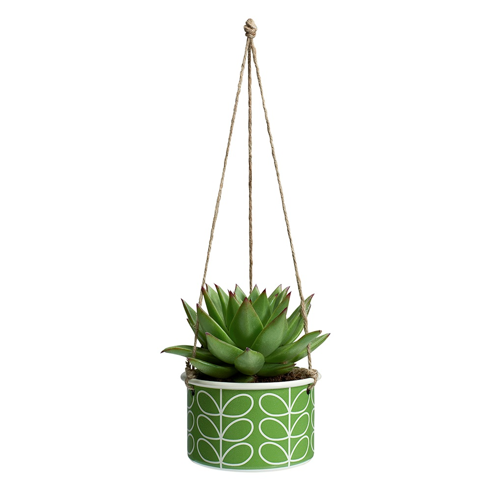 Orla Kiely Small Hanging Planter In Linear Stem Le Print