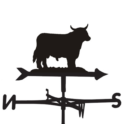 WEATHERVANE in Boss Bull Design