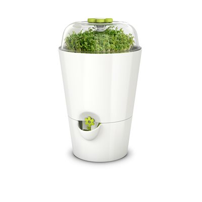 EMSA HERB POT WITH BELL JAR in White