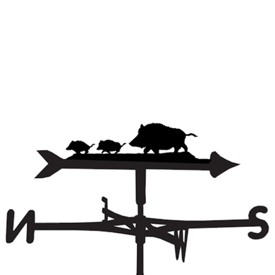 WEATHERVANE in Wild Boar
