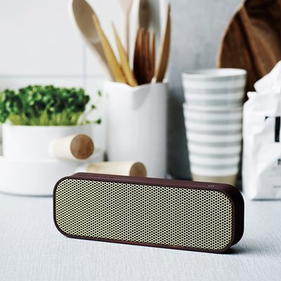 aGROOVE BLUETOOTH SPEAKER in Plum