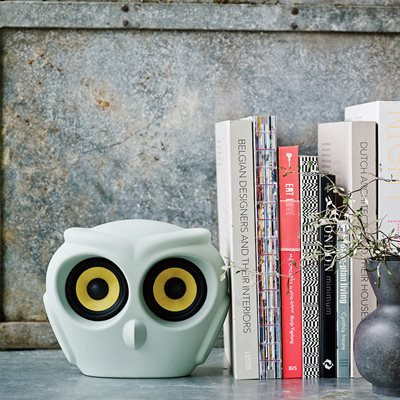 aOWL BLUETOOTH SPEAKER in Dusty Blue