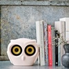 Owl Speakers