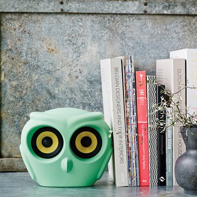 aOWL BLUETOOTH SPEAKER in Green
