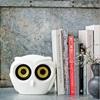 Owl Bluetooth Speaker