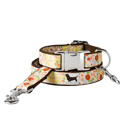 MEDIUM DOG COLLAR WITH LEAD in Sweet Tarts