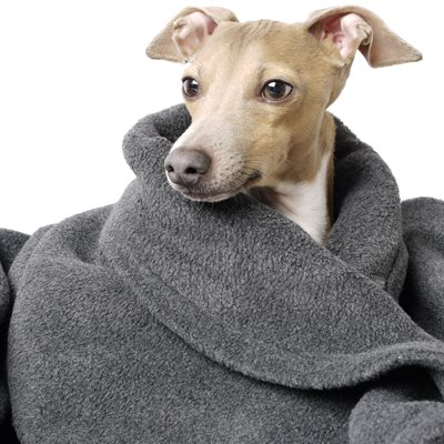 DOUBLE FLEECE DOG BLANKET in Charcoal