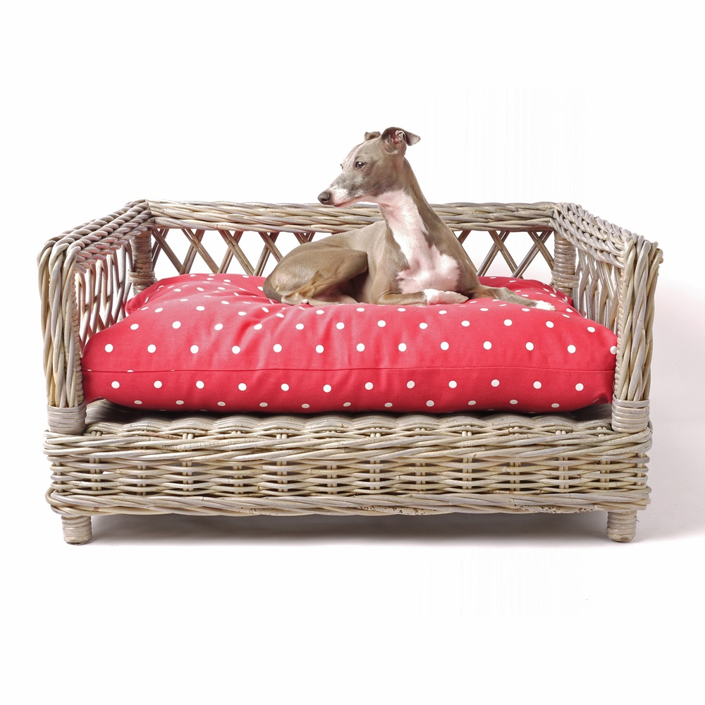 trendy dog beds chevron dog bed buy luxury dog beds from lion  - luxury dog beds blankets charley chau cuckooland