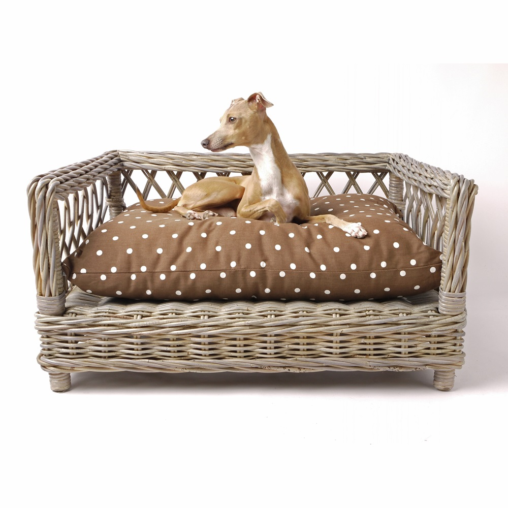 raised rattan dog bed with dotty chocolate mattress. Black Bedroom Furniture Sets. Home Design Ideas