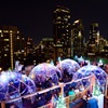 Outdoor Igloos Rooftop Bar